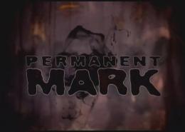 PermanentMarkPortfolio