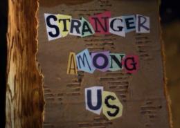 StrangerAmongUsPortfolio